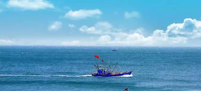 """海陆空""""神兽""""出没山东!日照、威海、长岛…这四个地方要火啦!"""
