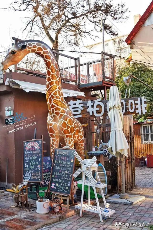 青岛大学路的美好时光